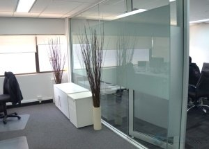 Brightlabs-Glass-Office-Partitions-300x215-1