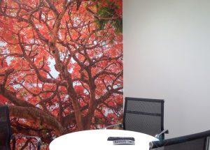 HFB-Meeting-Room-300x215-1
