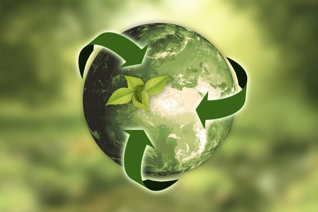 Sustainability in the Workplace