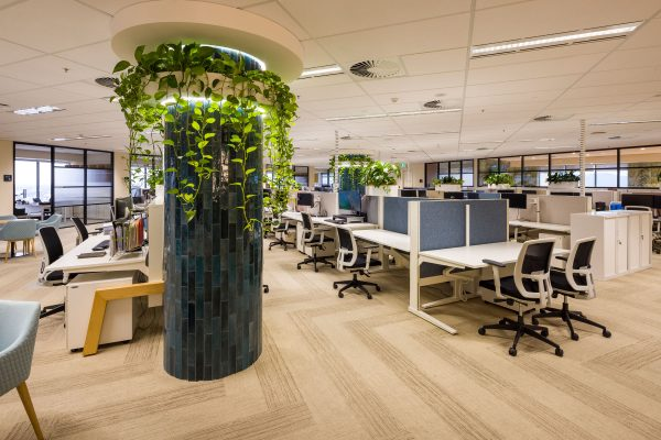 Office with Panel Dividers | Featured image for office noise reduction tips blog.